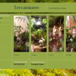 Terrainiums